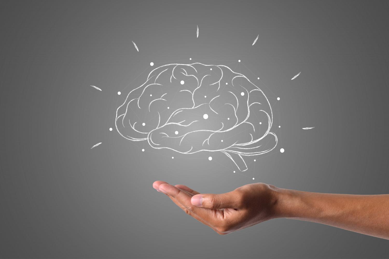 le cerveau-écrit-avec-la-craie-blanche